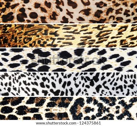 Set of Leopard textures - stock photo