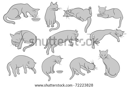Set of line cats silhouette - stock photo