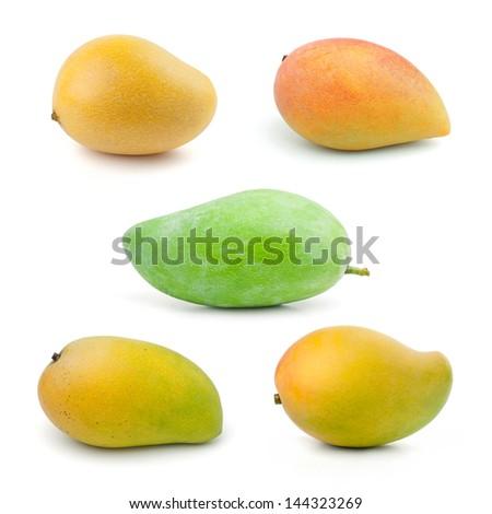 Set of Mango isolated on white background - stock photo