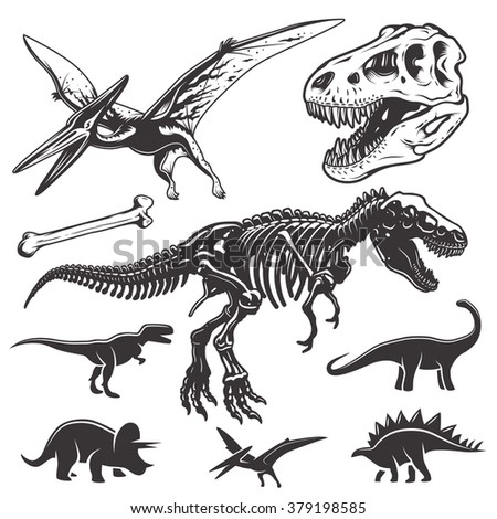Set of monochrome dinosaurs. Archeology elements. T-rex skull and skeleton. Dinosaurs icons. - stock photo