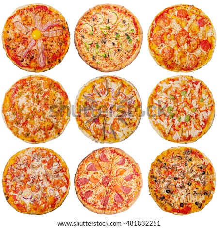 set of nine  pizzas on a white background