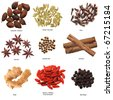 Set of nine spices isolated on white - stock