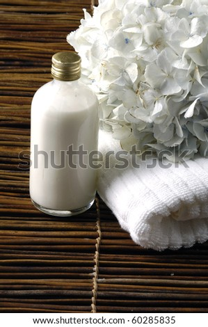 set of objects for body care - stock photo