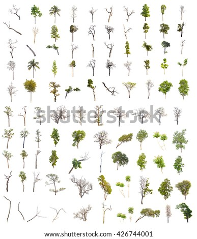 set of one hundred trees, part of trees, green trees, dead trees and isolated trees on white background  - stock photo