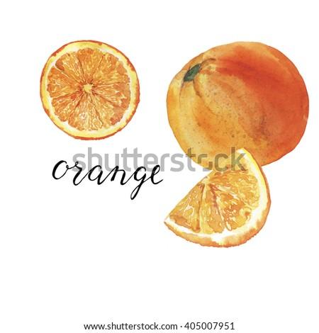 Set of orange and orange slices with hand lettering orange on white background. Hand drawn watercolor illustration. - stock photo