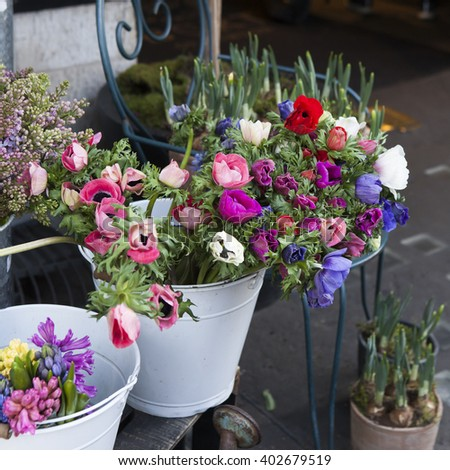 set of pink and blue anemone flowers in vase on table close up - stock photo