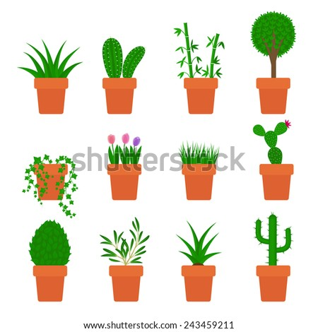 set of plants in pots - stock photo