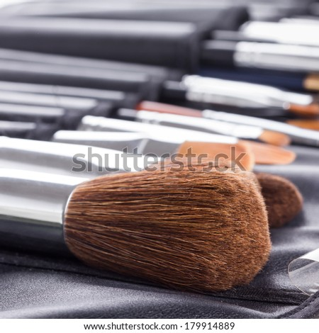 Set of professional makeup brushes in compact case