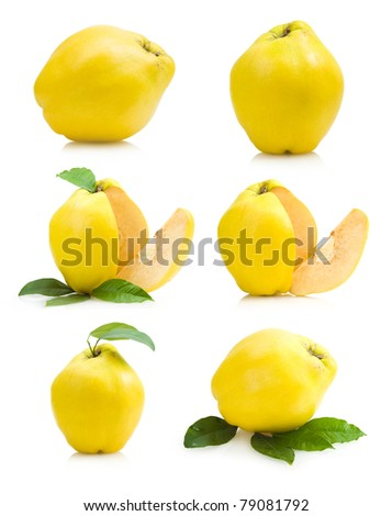 set of quince images - stock photo