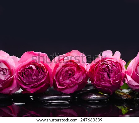 Set of rose and wet stones - stock photo