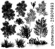 Set of sea coral silhouettes. Vector file available. - stock photo