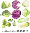 set of single fresh head cabbage close up isolated on white background   - stock photo