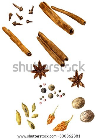 set of spice, drawing by watercolor,cloves and anise, cinnamon and nutmeg, paprika and pepper, hand drawn artistic painting illustration - stock photo