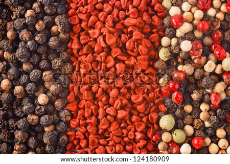 set of spices for background or texture