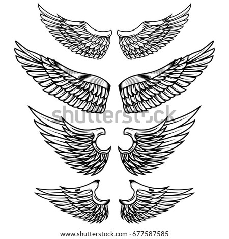 Set of the wings isolated on white background. Design elements for logo, label, emblem, sign, badge.