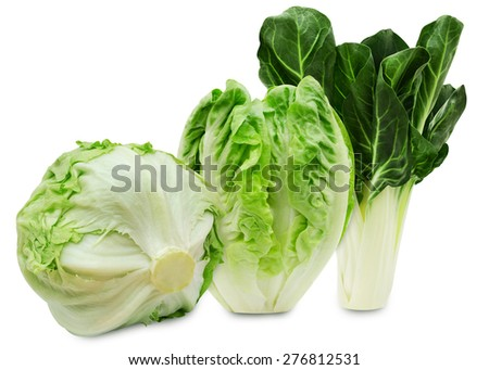 Set of three varieties of fresh salad lettuce isolated on a white background - stock photo