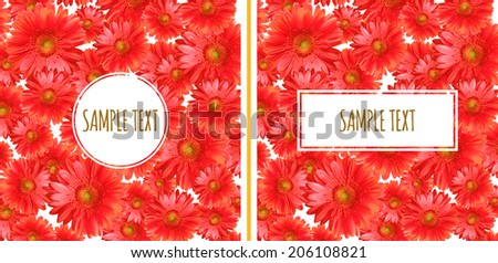 Set of Two Gerbera Backgrounds - stock photo