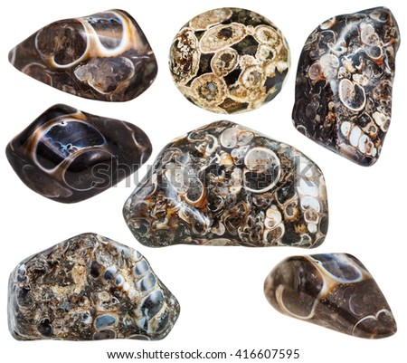 set of various turritella agate natural mineral stones and gemstones isolated on white background - stock photo