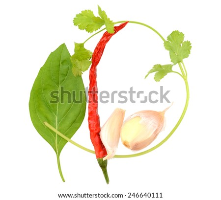 Set of vegetables and herbs isolated on white background - stock photo