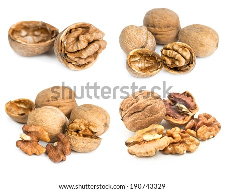 Set of walnuts in shell isolated on white background - stock photo