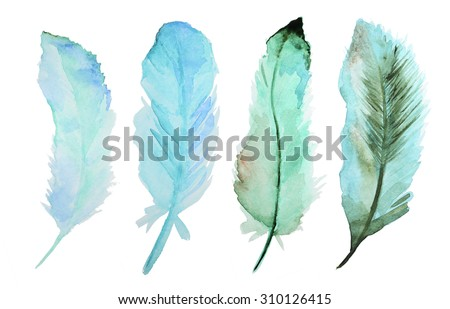 Set of watercolor feathers. A set of four color watercolor feathers - stock photo