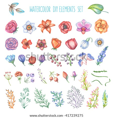 Set of watercolor floral diy elements. Flowers, branches, leaves, berries. Trendy design elements for greeting cards, prints, posters and so on. Illustration in high resolution.