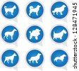 Set Of White Dog on Blue Icons Isolated on White Background - stock