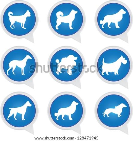 Set Of White Dog on Blue Icons Isolated on White Background - stock photo
