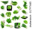 Set of young onion, garlic, parsley and letuce .Isolated - stock photo