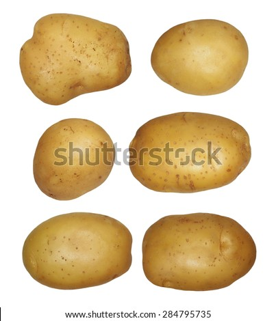 set potatoes isolated on white background, with clipping path - stock photo