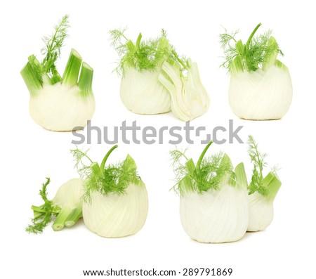 Set ripe green fennels isolated on white background - stock photo