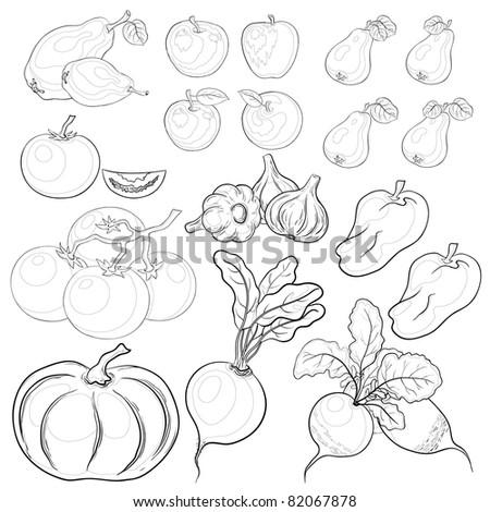 set: various vegetables and fruits, monochrome contours - stock photo
