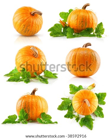 set vegetable pumpkins with green leaves isolated on white background - stock photo