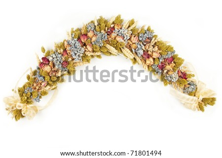 Setting of dried flowers with white background