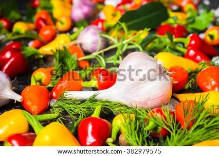 setting of garlic, yellow, red hot chili peppers, sea salt, different greenery and black peppers on cracks black background, close up - stock photo