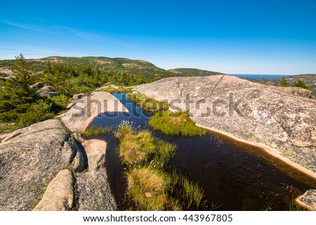 settled water in the rocks of cadillac mountain. Acadia National Park, Maine - stock photo