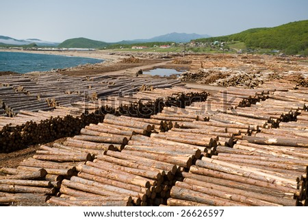 Settlement at the sea. A lot of wood at coast. - stock photo