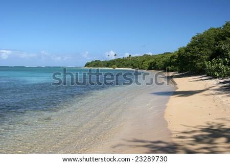 Seven seas bay, Puerto Rico - stock photo
