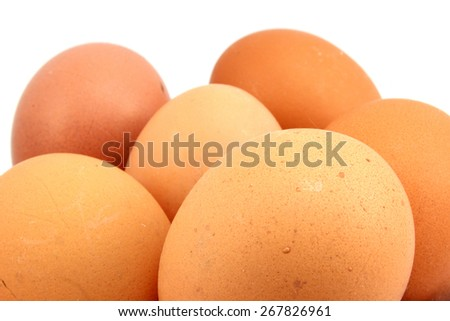 Several brown chicken eggs on a white background - stock photo