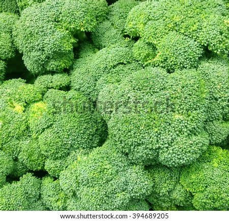 Several fresh Broccoli heads. Broccoli is high in Vitamin C and Vitamin K. - stock photo