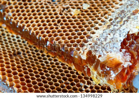 Several pieces of honeycomb full of Honey - stock photo