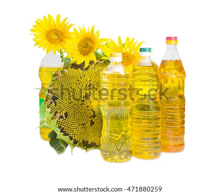 Pleasing Sunflower Variety Stock Photos Royalty Free Images Vectors Largest Home Design Picture Inspirations Pitcheantrous
