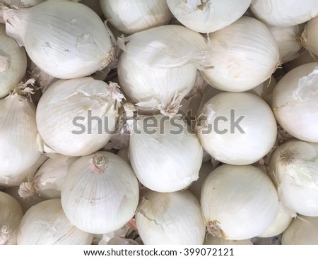 Several raw Onions make an raw Onion background - stock photo
