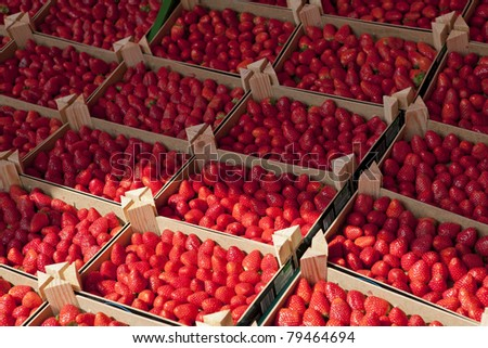 Several trays of strawberries for sale at French provincial market in Normandy - stock photo