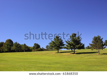 Several trees against a brilliant blue sky with a well manicured lawn. - stock photo