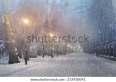 Severe weather in Kiev citizens favorite park, twilight hid fog and snowfall old trees, fall asleep benches, lights shine through the mist, cold and damp, a strong wind blows snowflakes quickly - stock photo
