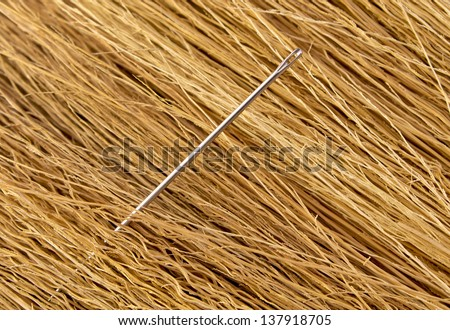 Sewing needle protruding in a haystack - stock photo