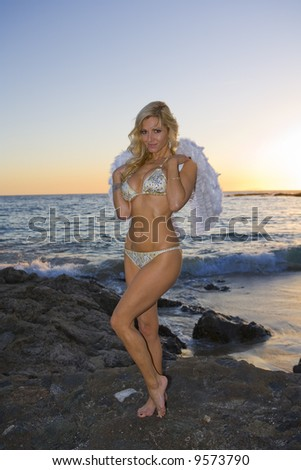 Sexy Angel standing on Rocks at the beach during Sunset - stock photo
