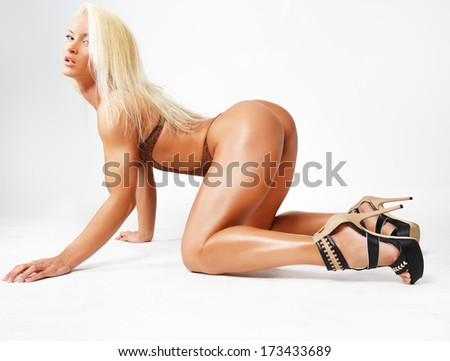 On All Fours Stock Images Royalty Free Images Amp Vectors