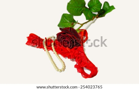 Sexy panties, pearls and red rose on white background  - stock photo